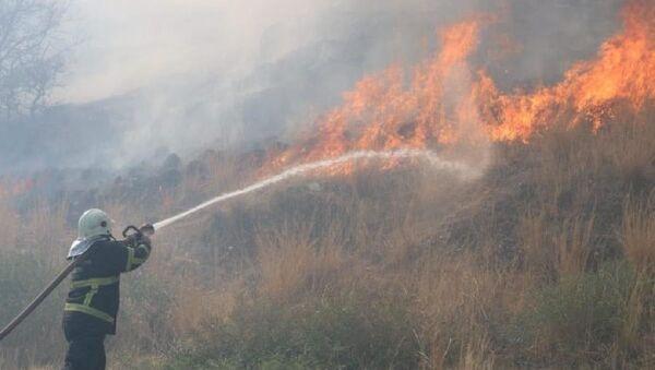 Söke ilçesinde, tarım arazisinde yakılan anız ateşi nedeniyle yangın çıktı. Yangın Priene Antik Kenti kalıntılarına 3 kilometre mesafede etkili olurken, yangına havadan ve karadan müdahale ediliyor. - Sputnik Türkiye
