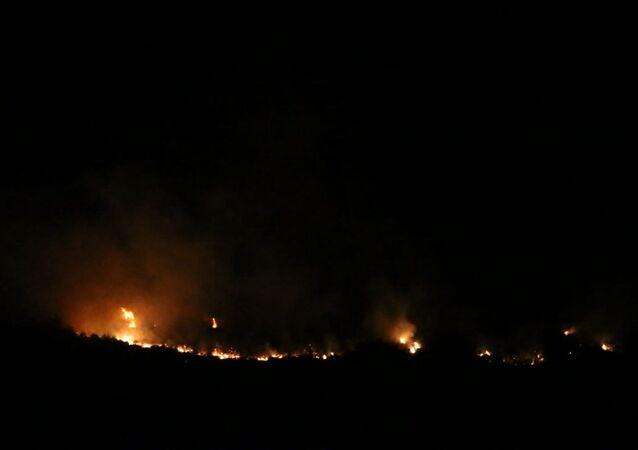 Adana'nın Kozan ilçesindeki ormanlık alanda çıkan yangına müdahale ediliyor