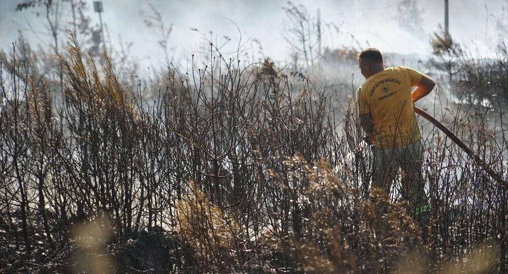 Balıkesir'in Havran ilçesinde orman yetiştirme sahasında çıkan yangın kontrol altına alındı.