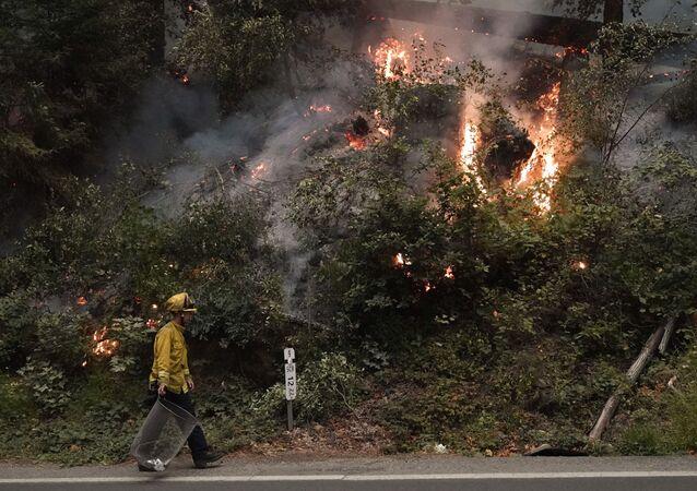Kaliforniya'da orman yangını