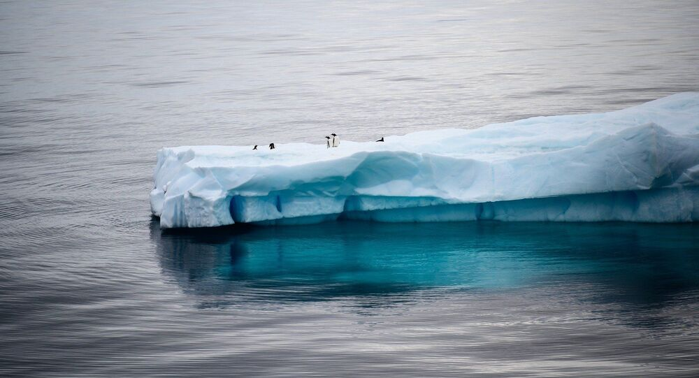 Antarktika, buzul, buzulların erimesi