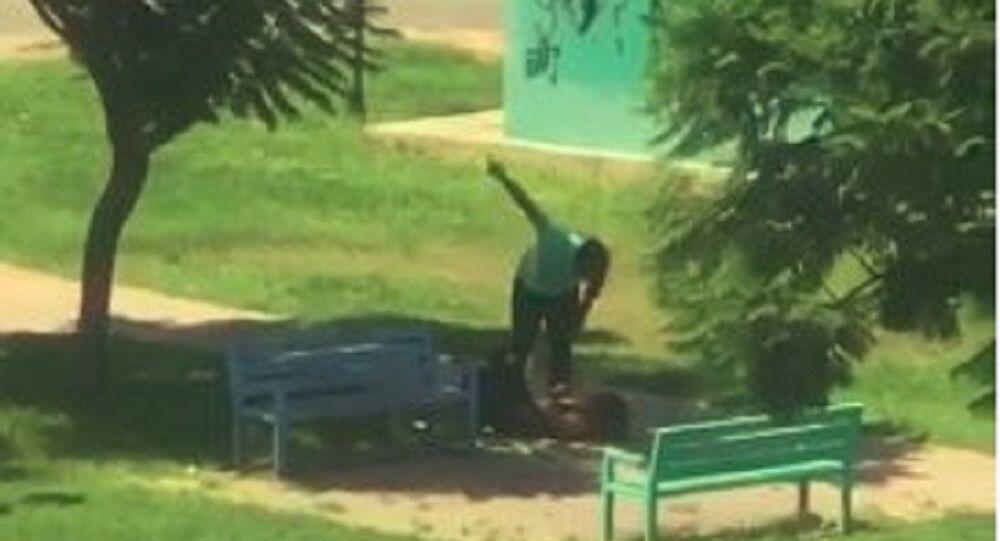 Antalya'da bir şahsın bir kadını parkta yere yatırıp darp ettiği anlar cep telefonu kamerasına yansıdı.