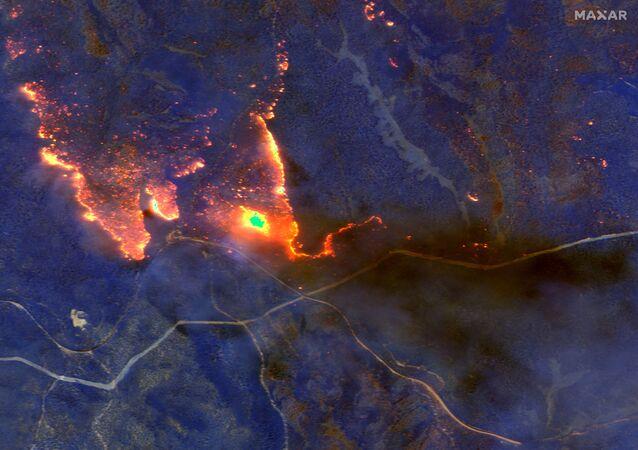 Avustralya'da milyonlarca hektar ormanlık alanı kül eden yangınların sebep olduğu dumanlardan dolayı en az dört bin kişinin hastaneye kaldırıldığı, 445 kişinin ise hayatını kaybettiği açıklandı. Ülkede Eylül 2019'da başlayan yangınlar Şubat 2020'de kontrol altına alınabilmiş, 10 milyon hektarlık alan kül olmuştu.