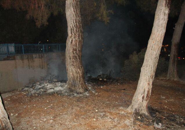 Aydın'ın Kuşadası ilçesinde aşırı alkollü şahıs bir ilkokulun bahçesinde bulunan ağaçları ateşe verdi.
