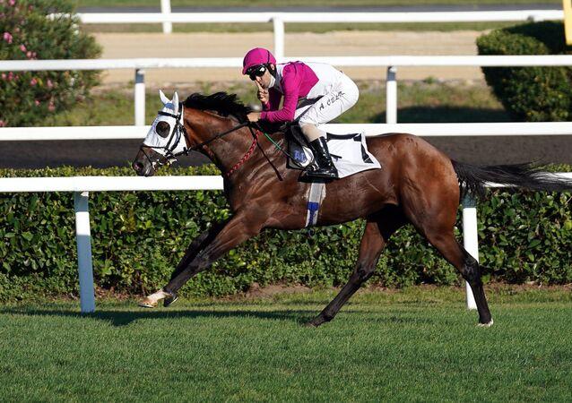 Bu yıl 94.sü düzenlenen Gazi Koşusu'nu Call To Victory adlı safkan atıyla jokey Ahmet Çelik kazandı