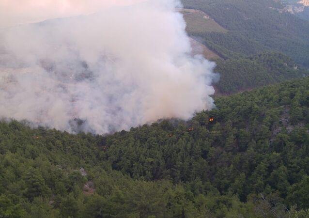 Adana'nın Karaisalı ilçesinde ormanlık alanda yangın çıktı. Ekipler yangına havadan ve karadan müdahale ediyor.