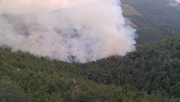 Adana'nın Karaisalı ilçesinde ormanlık alanda yangın çıktı. Ekipler yangına havadan ve karadan müdahale ediyor. - Sputnik Türkiye