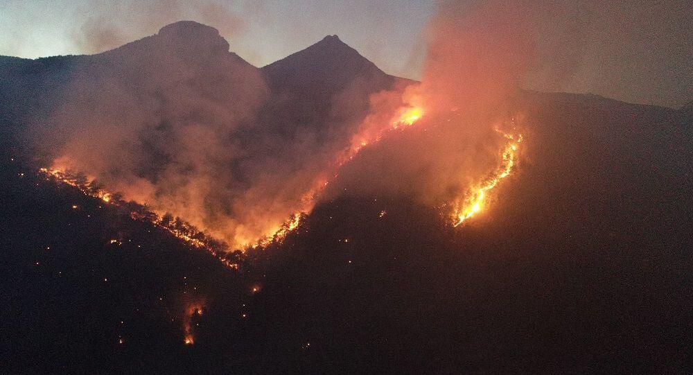 Adana'nın Karaisalı ilçesinde ormanlık alanda çıkan yangın kontrol altına alındı