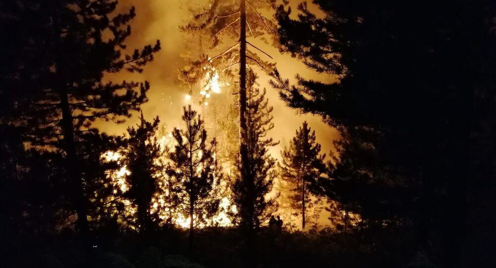 Bolu'nun Seben ilçesi Karca Kabak Yaylası mevkiinde ormanlık alanda yangın çıktı