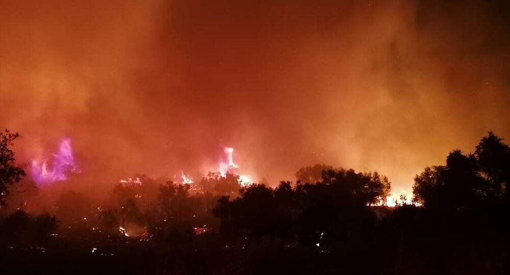 İzmir'in Ödemiş ilçesinde bir ikamette çıkan yangın otluk ve zeytinlik alana sıçradı. Çok sayıda ekibin müdahale ettiği yangın kontrol altına alındı.