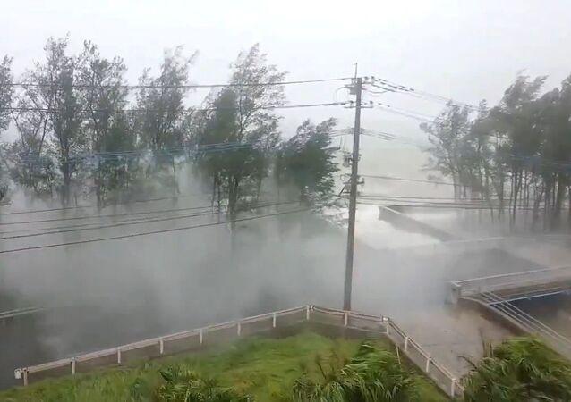 Japonya- tayfun