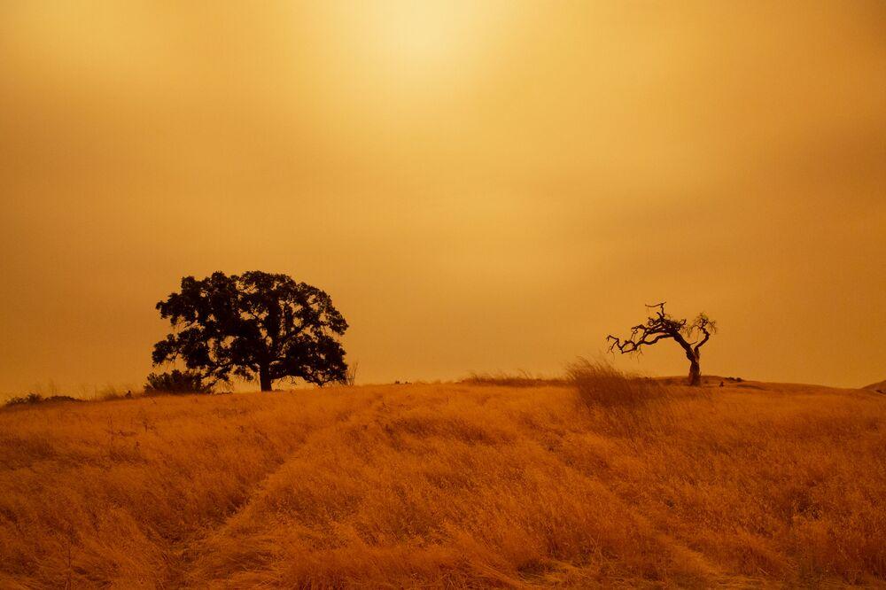 Orman yangınları nedeniyle gökyüzü turuncu renge bürünen Kaliforniya eyaletinden bir kare