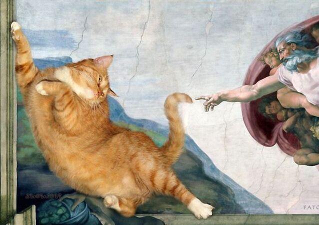 Kedi'nin Yaratılışı  Orijinal: Adem'in Yaratılışı - Michelangelo