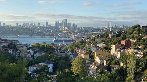 Bir tepeden İstanbul manzarası - Sputnik Türkiye