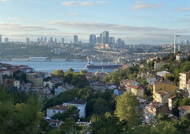 Bir tepeden İstanbul manzarası