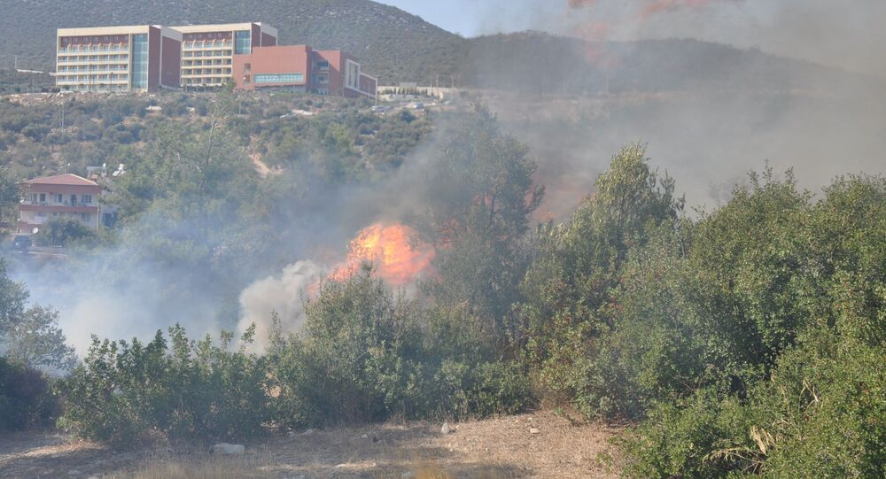 Muğla'nın Milas ilçesinde ormanlık arazide bugün aynı noktada 6 kez yangın çıktı. Çeşitli aralıklarla aynı bölgeden başlayan yangına itfaiye ve orman ekiplerinin yanı sıra mahalle sakinleri müdahalede bulundu.