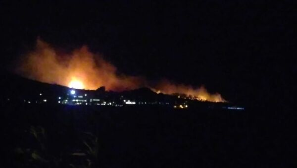 Ayvalık'ta orman yangını - Sputnik Türkiye