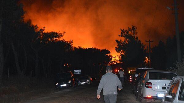 Balıkesir'in Ayvalık ilçesinde çıkan orman yangını - Sputnik Türkiye