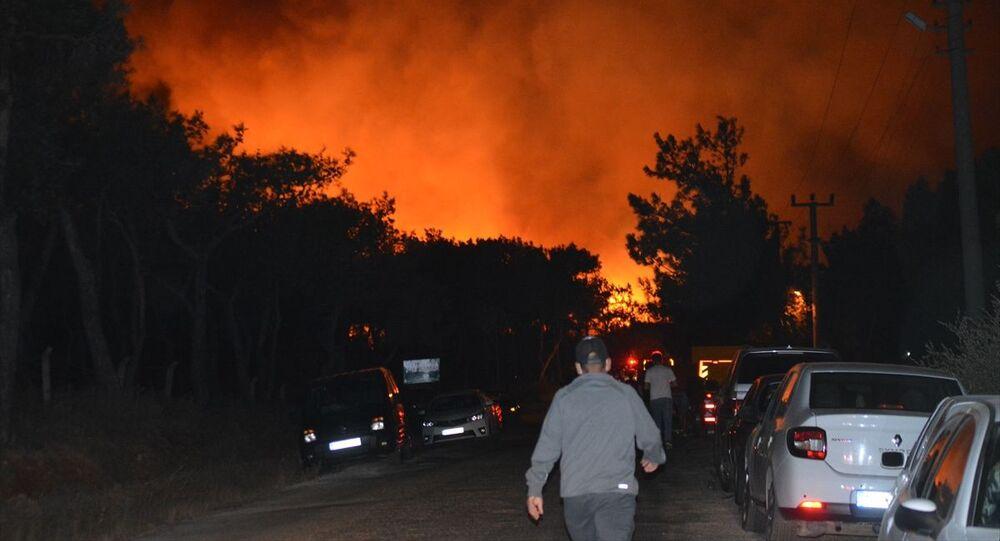 Balıkesir'in Ayvalık ilçesinde çıkan orman yangını
