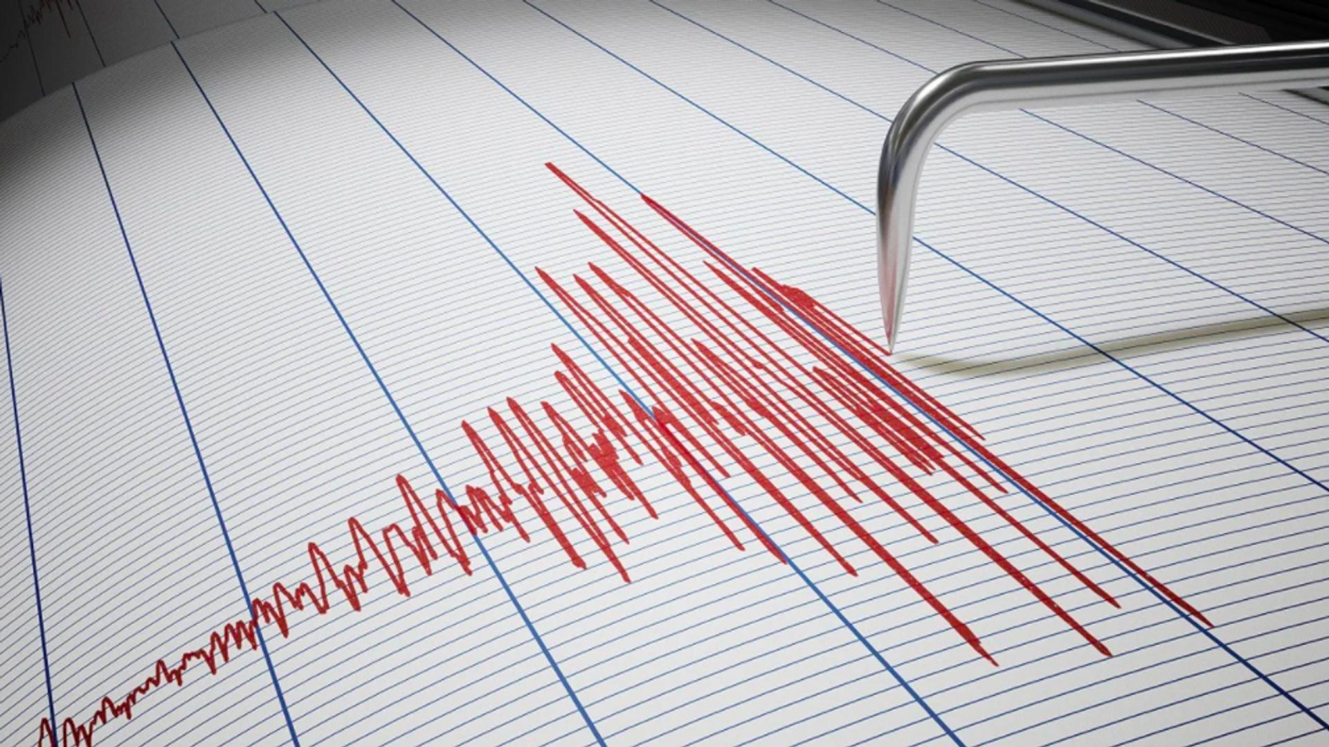 Deprem - sismograf - Sputnik Türkiye, 1920, 31.07.2021