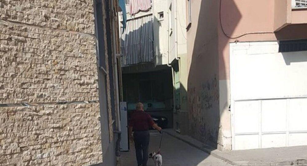 karantina - komşu - köpek gezdirmek - ihlal