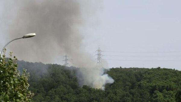 Aydos Ormanı, yangın - Sputnik Türkiye