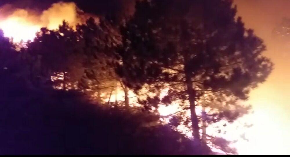 İzmir'in Bergama ilçesinde ormanlık alanda çıkan yangın, ekiplerin müdahalesi sonucu kontrol altına alındı.