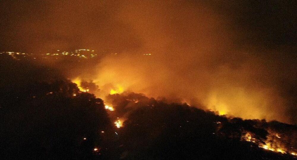 İstanbul Pendik'te Kurtdoğmuş mevkiindeki ormanlık alanda henüz belirlenemeyen bir nedenle yangın çıktı.