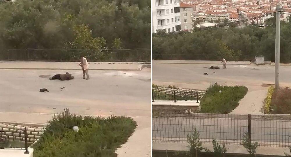 Eşini sokak ortasında vurdu, silah tutukluk yapınca kaçtı