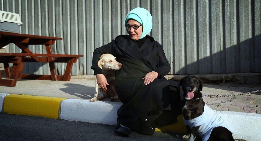 Emine Erdoğan-sahiplendiği engelli köpek Leblebi, Yedikule Hayvan Barınağı