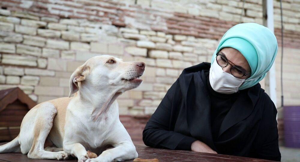 Emine Erdoğan ve sahiplendiği engelli köpek Leblebi