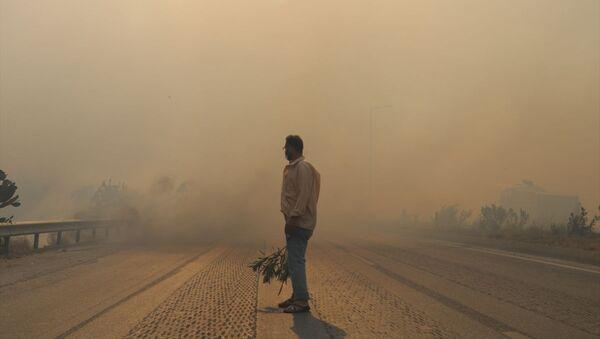 Hatay'daki orman yangını - Sputnik Türkiye