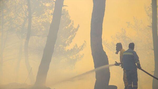 Hatay orman yangını - Sputnik Türkiye