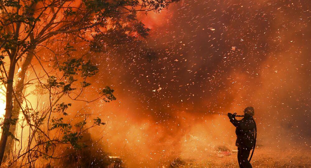 orman yangını, Cordoba, Arjantin