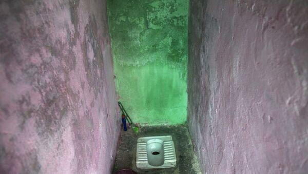Haryana'da bir tuvalet, Hindistan - Sputnik Türkiye