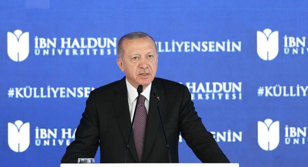 Erdoğan: Fikri iktidarımızı hâlâ tesis edemediğimiz kanaatindeyim - Sputnik Türkiye