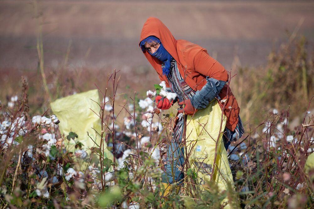 Türkiye'nin önemli tarımsal üretim merkezlerinden biri olan Diyarbakır'ın Bismil İlçesi, tarım işçilerinin yoğun yaşadığı ilçelerden biri. İlçede yaşayan tarım işçileri, bazen il dışına bazen de yaşadıkları şehirlerde günlük yevmiye ile çalışarak geçimini sağlıyor.