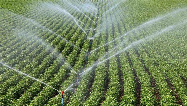 tarım - sulama - Sputnik Türkiye