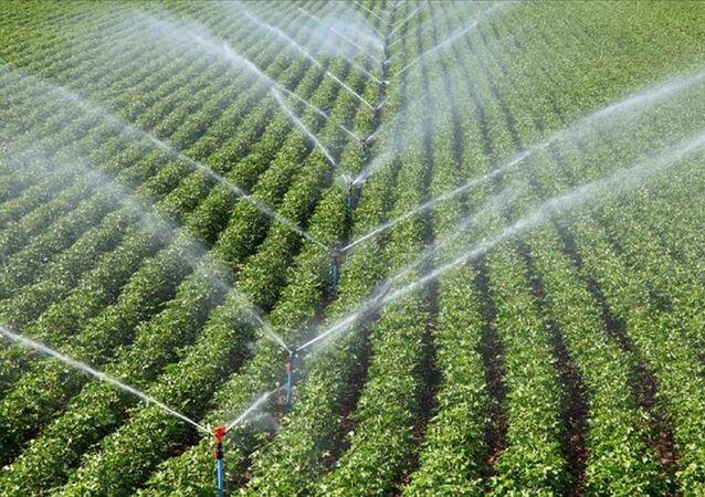 tarım - sulama