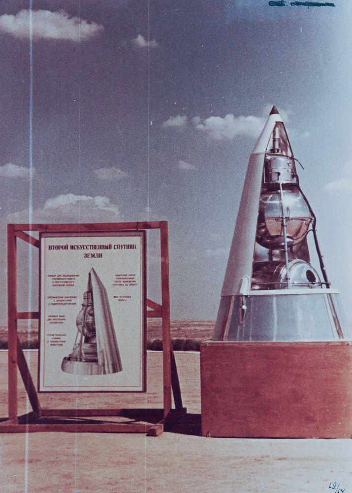 Sputnik — 2'nin en önemli görevi ise, SSCB liderliğinin de talebi doğrultusunda, o zamana dek gerçekleştirilemeyeceği öngörülen 'uzaya canlı çıkarma' fikrinin hayata geçirilmesiydi. Bilim insanlarının bu konuda önlerinde duran soru ise yolcunun kim olacağı sorusuydu.