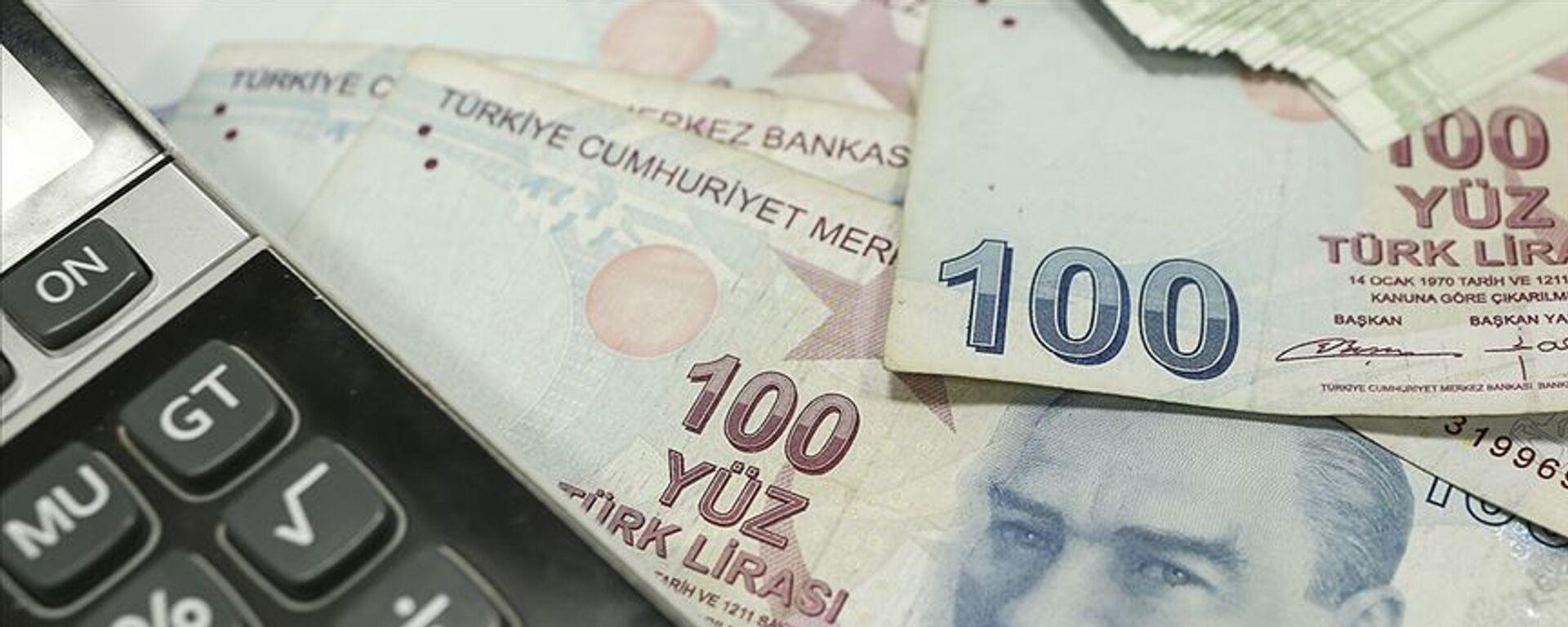 Hesap makinesi para TL - Sputnik Türkiye, 1920, 05.07.2021