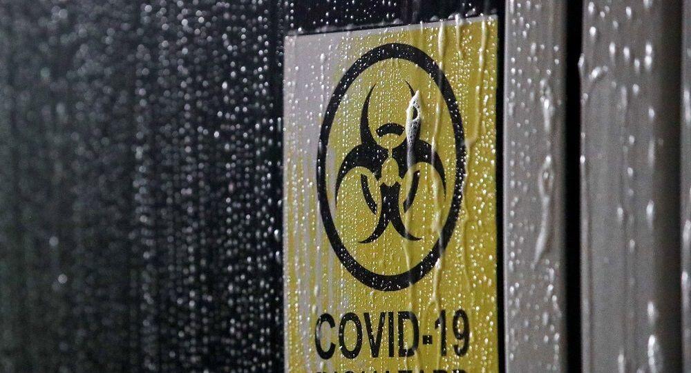 Koronavirüs, Kovid-19