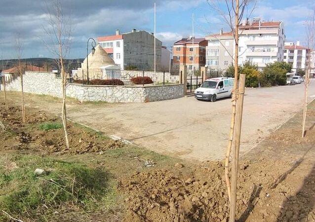 Beyaz Ruslar'ın anısına Gelibolu'da ağaç dikimi