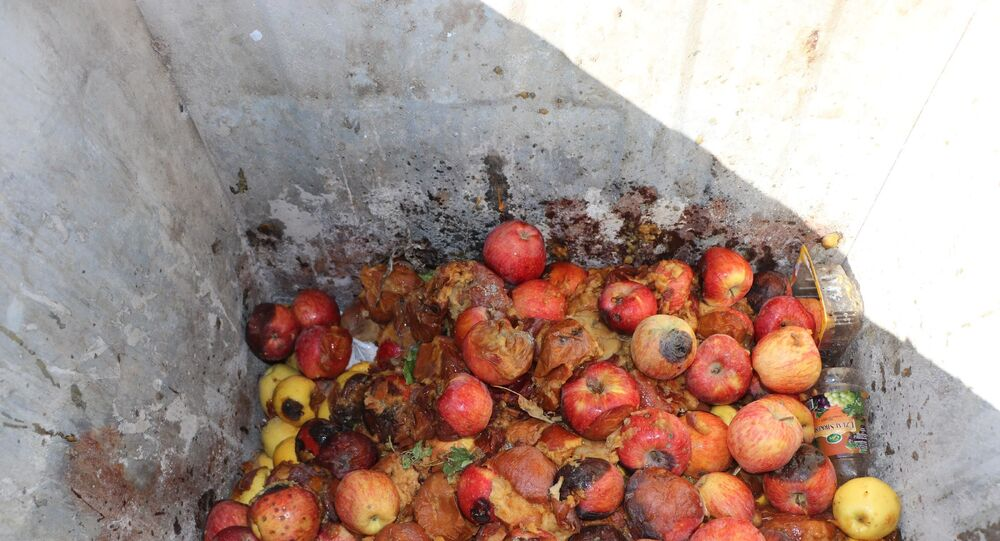 Çürük elma - Kayseri