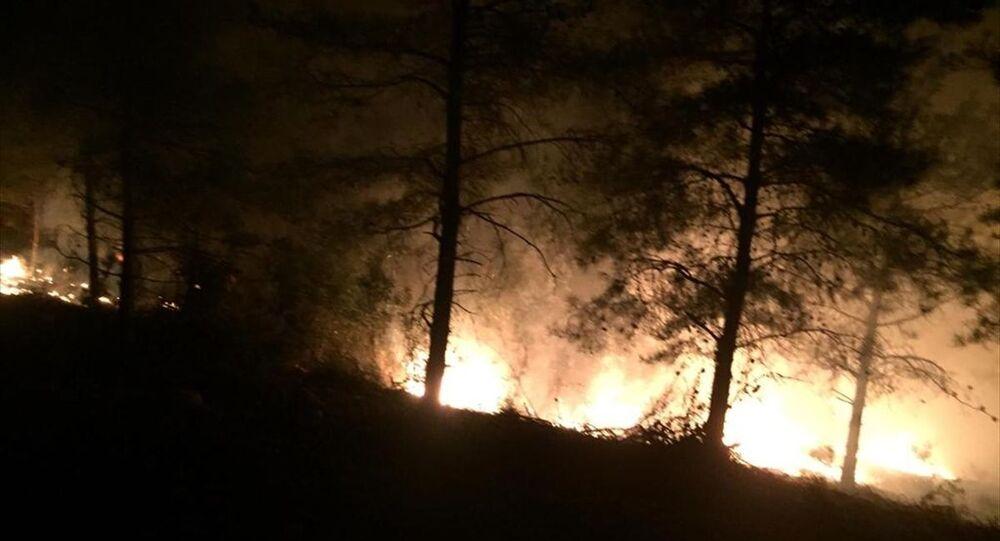 Hatay'ın İskenderun ilçesinde orman yangını çıktı.