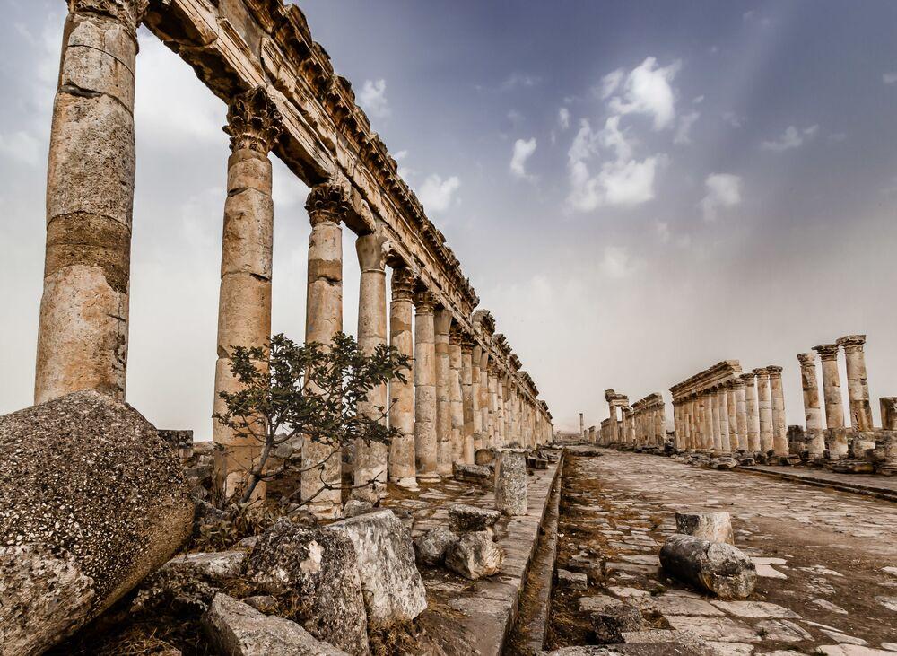 2020 Tarihi Mekanlar Fotoğrafçılık Yarışması'nın Tarihin Yaşandığı Yer kategorisinin kazananı fotoğrafçı Martin Chamberlain'in fotoğrafı  Suriye'de iç savaş başlamadan önce Palmira Antik Kenti'nde çekildi
