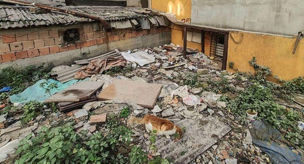 kedilerin parçalandığı metruk bina