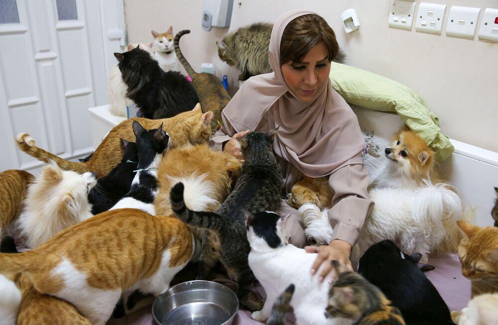 Bununla birlikte bir çocuk annesi olan 51 yaşındaki emekli memur, 2008 yılında bir İran kedisini sahiplenene kadar hep hayvanlardan çekindiğini, ancak sonra onlardan vazgeçemediğini aktardı.