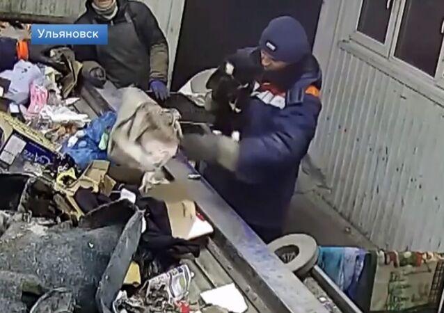 Rusya'da atık öğütme makinesinden kurtarılan kedi