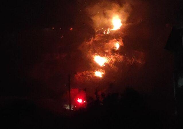 Hatay'da dört noktada orman yangını